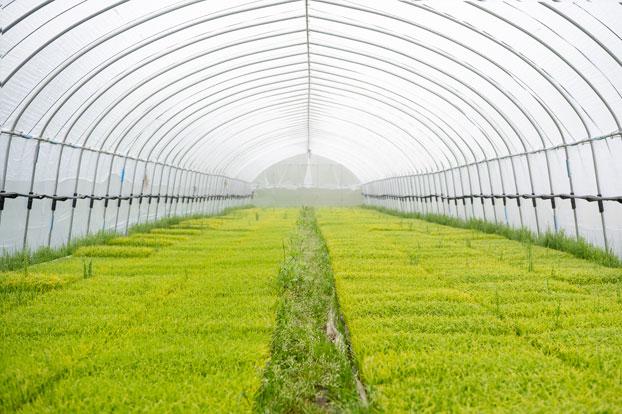 阿山農産の毎日2
