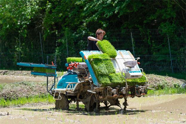 阿山農産の毎日4